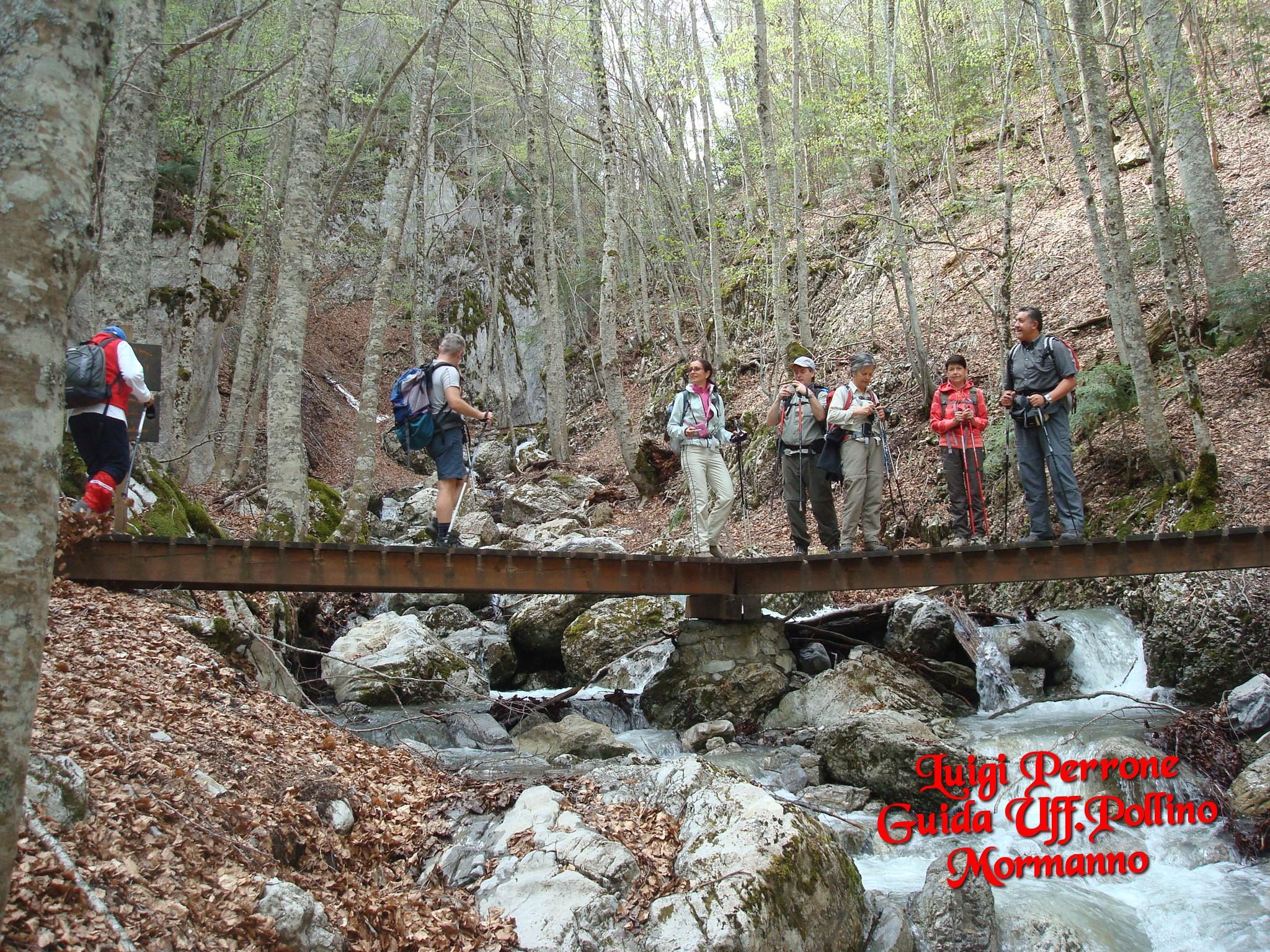 Escusione parco pollino rifugi cime piani fiume lao for Piani di ponte ottagonale
